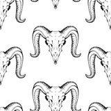 Безшовная картина с черепами антилопы Текстура для обоев, t Стоковое Изображение RF