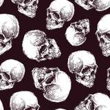 Безшовная картина с черепами Стоковое Изображение
