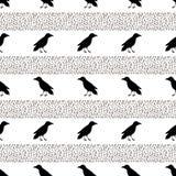 Безшовная картина с черными воронами на белой предпосылке Стоковое Фото