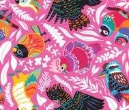 Безшовная картина с экзотическими австралийскими птицами и тропическими листьями на розовой предпосылке иллюстрация штока