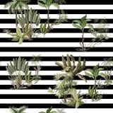 Безшовная картина с экзотическими деревьями такими мы ладонь и банан на ландшафте Внутренние винтажные обои иллюстрация вектора
