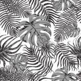 Безшовная картина с экзотическими листьями Стоковые Изображения RF