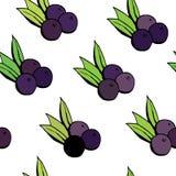 Безшовная картина с ягодами acai Иллюстрация вектора