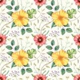 Безшовная картина с wildflowers и травами Нарисованная рукой иллюстрация акварели Иллюстрация штока