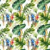 Безшовная картина тропических листьев, плотные джунгли акварели Ha Стоковые Изображения