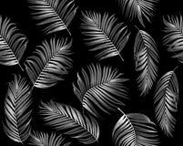 Безшовная картина тропической пальмы листьев стоковое изображение rf