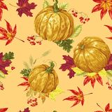 Безшовная картина фестиваля осени на сезон сбора в векторе иллюстрация штока
