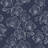 Безшовная картина цветка с предпосылкой фаленопсиса орхидей Стоковая Фотография