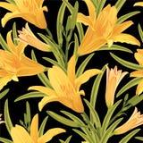 Безшовная картина цветков лилии Стоковые Изображения RF