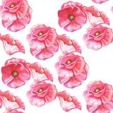 Безшовная картина цветков тюльпанов Стоковые Фото