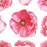 Безшовная картина цветков тюльпанов Стоковые Изображения RF