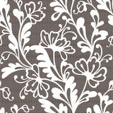 Безшовная картина шнурка цветка Стоковые Изображения RF