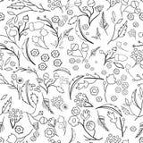 Безшовная картина экологичности с листьями вектор Стоковая Фотография RF