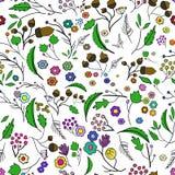 Безшовная картина экологичности с листьями Вектор 1 Стоковая Фотография