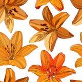 Безшовная картина ярких оранжевых и желтых лилий на белой предпосылке иллюстрация штока
