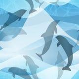 Безшовная картина дельфина Стоковая Фотография RF