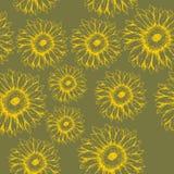 Безшовная картина gerbera цветков на зеленой предпосылке Стоковая Фотография