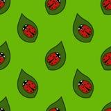 Безшовная картина - ladybugs Стоковые Изображения
