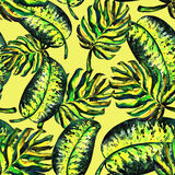 Безшовная картина monstera листьев Бесплатная Иллюстрация