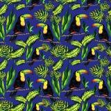Безшовная картина monstera и Toucan листьев Бесплатная Иллюстрация