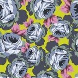 Безшовная картина Rose Стоковые Изображения RF
