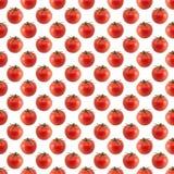 Безшовная квадратная предпосылка с изображением томатов. Стоковые Изображения RF