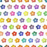 Безшовная красочная текстура цветков, изоляция на белой предпосылке Стоковое Изображение