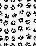 Безшовная печать лапок собак Стоковые Изображения RF
