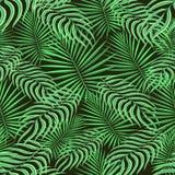 Безшовная предпосылка картины Экзотическая троповая флористическая ладонь выходит листва Ткань моды растительности ткани Безшовны иллюстрация штока