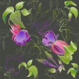 Безшовная предпосылка от орнамента цветков, модное современное Стоковое Фото