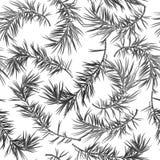 Безшовная предпосылка с елью в серой шкале стоковые изображения rf