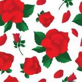 Безшовная предпосылка с красными розами на белизне иллюстрация вектора