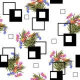 Безшовная предпосылка с милыми цветками и квадратами сада Стоковая Фотография RF