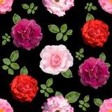 Безшовная предпосылка с различными розовыми цветками стоковые фотографии rf