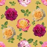 Безшовная предпосылка с различными розовыми цветками стоковое изображение
