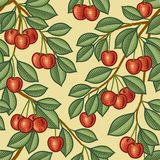 Безшовная предпосылка вишни Стоковая Фотография RF