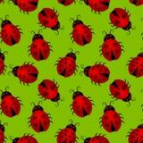 Безшовная предпосылка Ladybugs сердца Стоковые Изображения