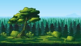 Безшовная предпосылка ландшафта с глубоким лесом ели Стоковые Изображения