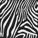 Безшовная предпосылка вектора с кожей зебры Стоковые Фото