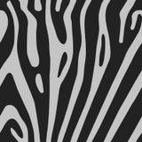Безшовная предпосылка вектора с кожей зебры Бесплатная Иллюстрация