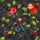Безшовная предпосылка плодоовощей Стоковое фото RF