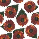 Безшовная предпосылка с коричневыми солнцецветами и листьями Стоковые Изображения RF