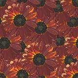 Безшовная предпосылка с коричневыми солнцецветами Стоковое Изображение