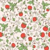 Безшовная предпосылка с клубникой и цветками Стоковые Изображения