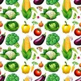 Безшовная предпосылка с много овощей иллюстрация вектора