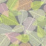 Безшовная предпосылка с скелетами листьев Стоковая Фотография