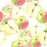 Безшовная предпосылка с яблоками акварели Стоковая Фотография RF