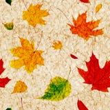 Безшовная предпосылка grunge с листьями осени летания Стоковая Фотография RF