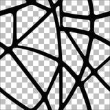 Безшовная прозрачная предпосылка с черными линиями Стоковая Фотография RF