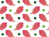 Безшовная ретро картина с точками и листьями польки Стоковые Изображения